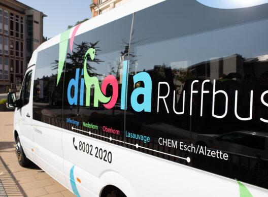 Ruffbus: Dinola sucht Begleitpersonen